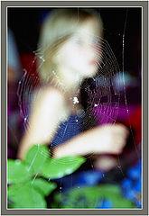 "photo ""Web"""