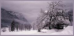 "photo ""Narnia"""