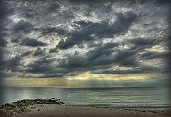 "фото ""Florida, November"""