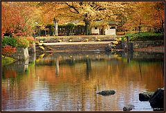 "фото ""Japanese garden"""