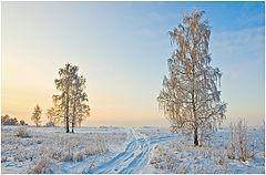 """фото """"Утро в январе"""""""