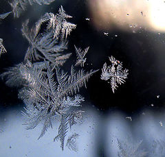 "photo ""Last winter fantasy ..."""