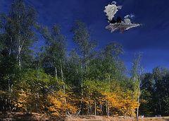"""фото """"Осенний листопад..."""""""