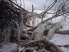 "photo ""Beach froze"""