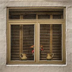 фото Window
