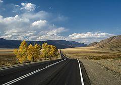 фото Осень на Алтае