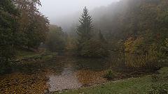 фото Лесное озеро