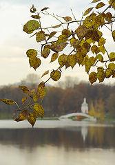 фото осень в Михалково