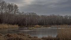фото Уж лёд сковал реку...