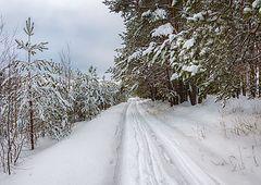 фото Зимняя дорога (2)