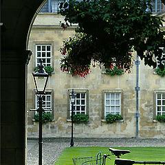 """фото """"Cambridge"""""""