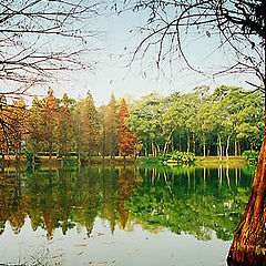 """фото """"One Side Of The Lake"""""""