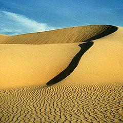 """photo """"Sand Dunes # 2"""""""