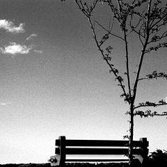 "фото ""Something simple"""
