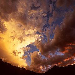 """фото """"Rising Like A Dream"""""""