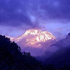 "фото ""Golden Mountain"""