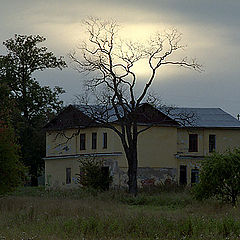 "photo ""Spooky House"""