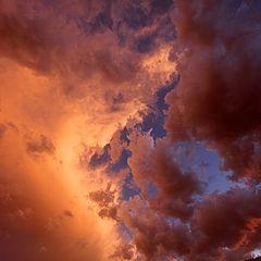 "photo ""Rising To Heaven"""