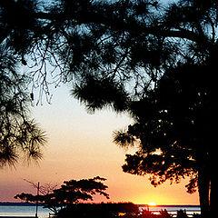 """фото """"Shiloh Sunset"""""""