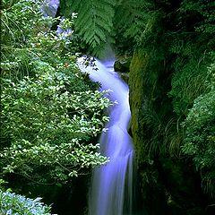 "photo ""water-fall"""