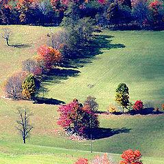 "photo ""Autumn Patchwork...."""