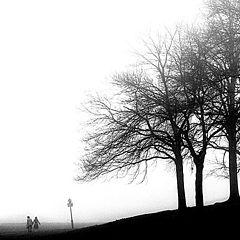 "photo ""Fog Walkers"""