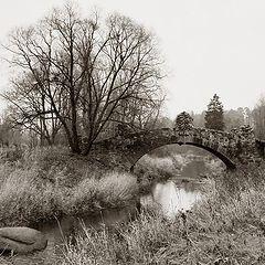"photo ""Autumnal Sonata"""
