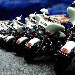 """фото """"Police Lineup"""""""