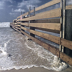 """photo """"Fence of the sea"""""""
