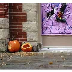 "photo ""Hallowe`en for squirrel"""