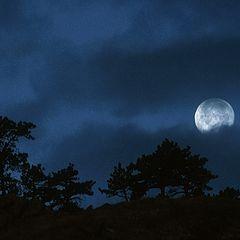 "фото ""On A Dark And Stormy Night"""