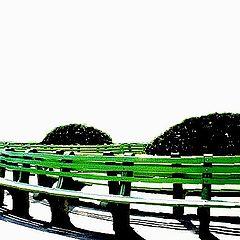 """фото """"Green Bench(2)"""""""
