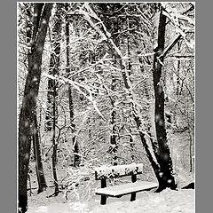 """фото """"Untitled photo"""""""