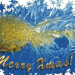 """фото """"Happy Holidays!"""""""