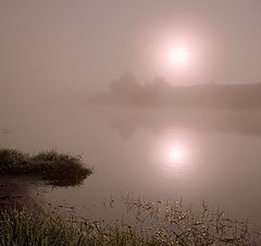 "фото ""Meine Morgensonne"""
