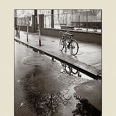 """фото """"One rainy afternoon in New York (Separation)."""""""