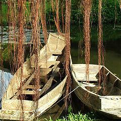 "photo ""Love boats"""