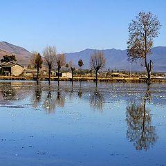 """фото """"Pond in Yunnan"""""""