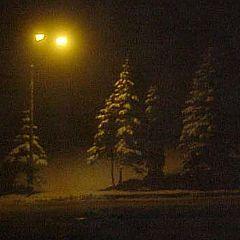 """фото """"Бегство перед Новым Годом"""""""