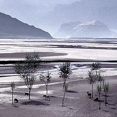 "photo ""Indus Valley"""