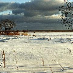 """фото """"Зимняя картинка 7 ( последняя )"""""""