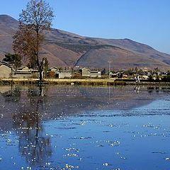 """фото """"Yunnan, China"""""""