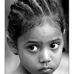 "фото ""Life (Timor)"""