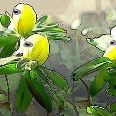 """photo """"Alienplants"""""""