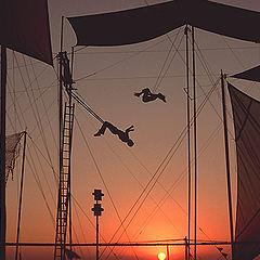 "фото ""Le cirque du soleil"""