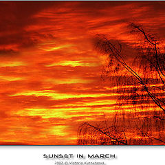 "photo ""Sunset in March"""