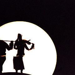 "photo ""Midnight duet"""