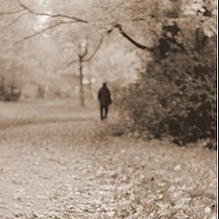 "photo ""Autumn Park #1"""