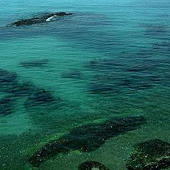 "фото ""Green Sea"""
