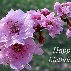 """photo """"Happy birthday to me :-)"""""""